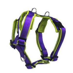 Harnais 4dox violet vert