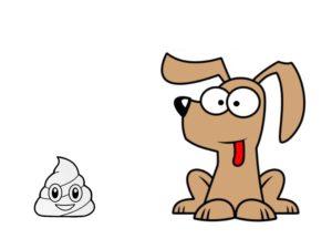 chien et crotte coprophagie chien muzo muzoplus wini vershueren