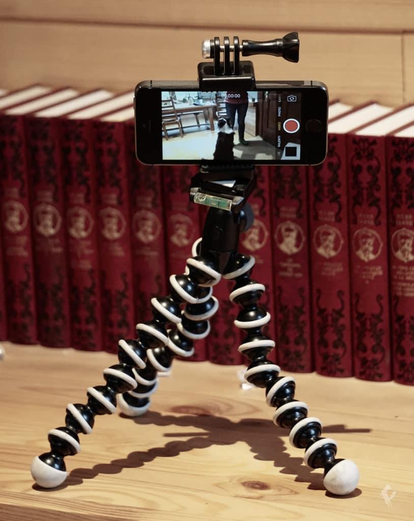 trépied filmer analyse vidéo chien